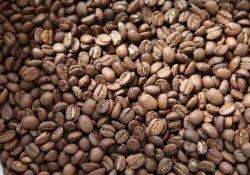 Вигідна покупка кави оптом